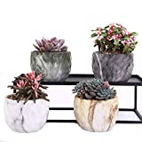 winemana Set of 4 Modern Style Marbling Ceramic Flower Pot Succulent Cactus Bonsai Planter Pots Container (Marbling Container)