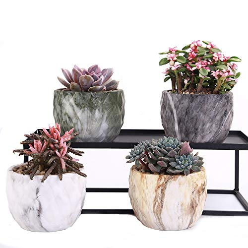 (winemana Set of 4 Modern Style Marbling Ceramic Flower Pot Succulent Cactus Bonsai Planter Pots Container (Marbling Container))