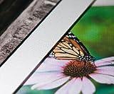ColorStore - Premium Polyester Canvas Matte for