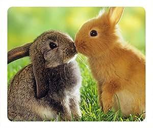 Rabbit love oblong mouse pad by Cases & Mousepads