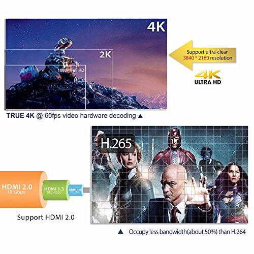 SHENGMO M96X-II MINI Android 7.1 TV BOX S905W Quad core 2GB Ram 16G Rom 5G Dual WIFI Bluetooth 4K H.265 HDMI 2.0 KODI 18 Tv Box by Shengmo (Image #7)