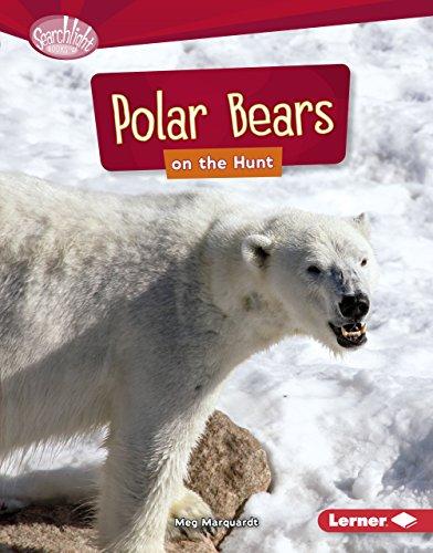 Polar Bears on the Hunt (Searchlight Books ™ — Predators) image