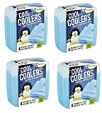 Fit & Fresh Cool Coolers Slim Reusable Ice Packs for Lunch Boxes lDIwPT, Lunch Bags and Coolers, Set of 16