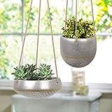 HangingPlanters Flower Plant Pot - Hand Painted