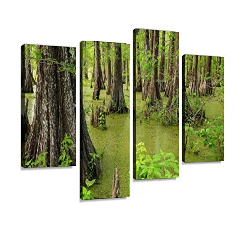 Louisiana Swamp and Cypress Trees at Cypress Island Preserve Canvas Wall Art Hanging Paintings Modern Artwork Abstract Picture Prints Home Decoration Gift Unique Designed Framed 4 Panel