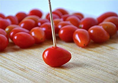 Super Sweet Red Grape Tomato Seeds.organic Home Grown Small Tomatoes~ 50 Seeds
