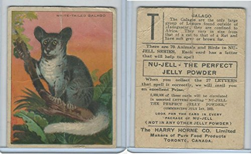 FC1, Harry Horne Co, Nu-Jell, Animals And Birds, 1925, White Tailed Galago