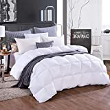 Alternative Comforter - Cosydown White Goose Down Alternative Comforter,All Season Duvet Insert(Queen:90x90 Inch) Ultra Soft Brushed Microfiber - Hypoallergenic Plush Mircofiber Comforter Duvet Insert (Deals-Queen)