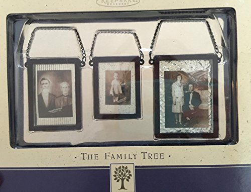 The Family Tree Start Kit Photo Holders By Hallmark, Glass & Metal ()