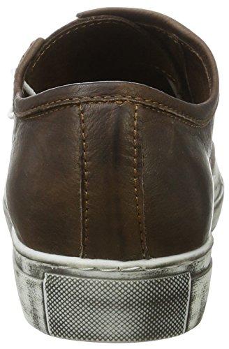 Sneaker Dunkelbraun Braun Conti Andrea 0342719 Damen zqXvnwxtTS