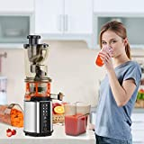 Juicer Machines, Vestaware Cold Press Slow Juicer