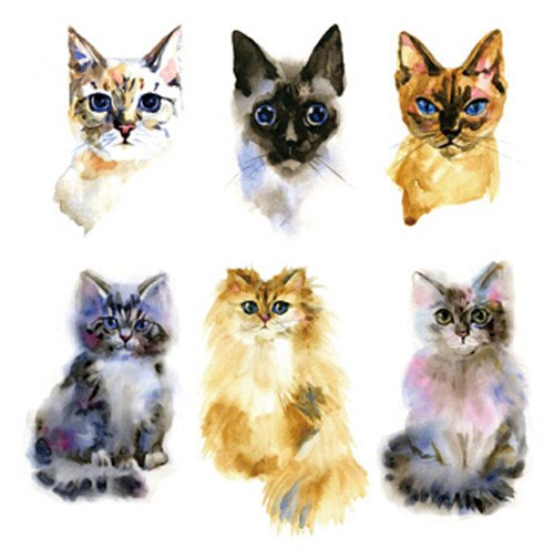 Set of 2 Waterproof Temporary Fake Tattoo Stickers Watercolor Yellow Grey Cat Design