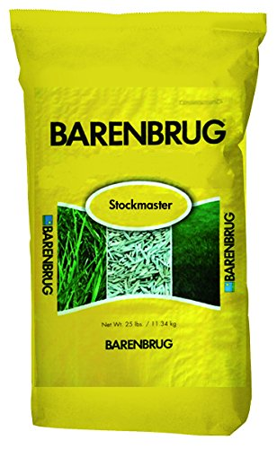 - Barenbrug Stockmaster25 Tall Fescue Pasture Seed - Forage Mixture for Livestock, Cattle, Sheep, and Horses -  25 lbs - Covers 1 Acre