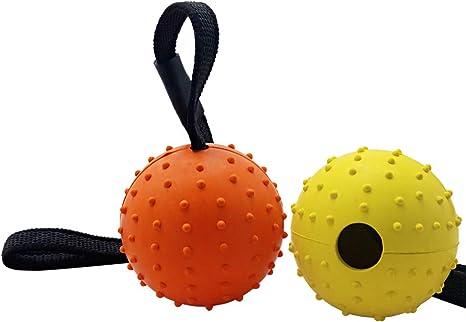 Bola de Perro vivificante en una Cuerda, Paquete de 2 Bolas de ...