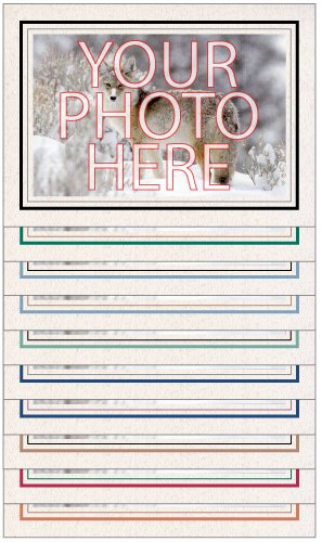 Photographer's Edge, Photo Insert Card Sample Pack, 10 Natural w/Double Border Cards, for 4x6 Photos