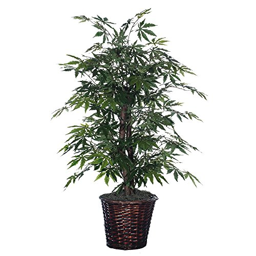 - Vickerman 4' Artificial Japanese Maple Bush set in Rattan Basket