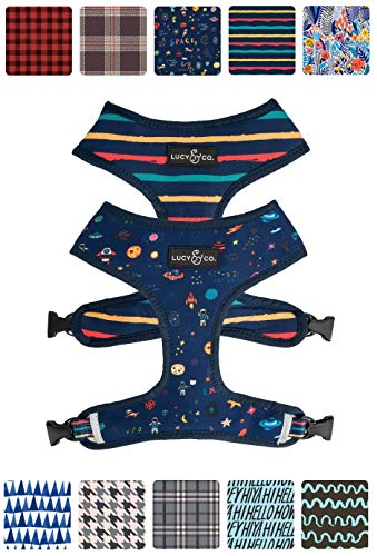 Cute Reversible Dog Harness Walking Halter - Best Designer Pet Harnesses For Extra Small Medium Large XL Dogs Plus Pug Breeds - Padded Adjustable Puppy Vest For Easy Walking (Small, Space Doodle)