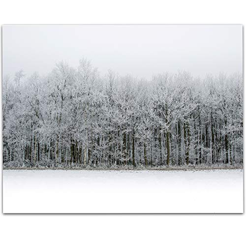 LSA Brand The Ice Forest - 11x14 Unframed Print - Makes a Great Cabin Decor Under $15