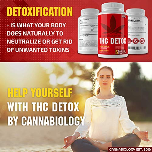 THC Detox Made in USA - BIO-Cleanse - Liver Detox, Urinary Tract & Kidney Cleanse - 5 Day Detox - Broad-Spectrum Toxin Cleanse - Natural THC Remover - Milk Thistle, Cranberry - Vegetarian Capsules by Cannabiology Est. 2016 (Image #6)