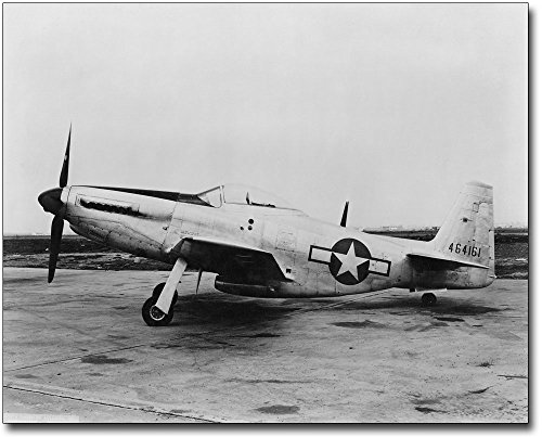 P-51 / P-51D Mustang WWII Fighter 8x10 Silver Halide Photo (P-51d Mustang Pictures)