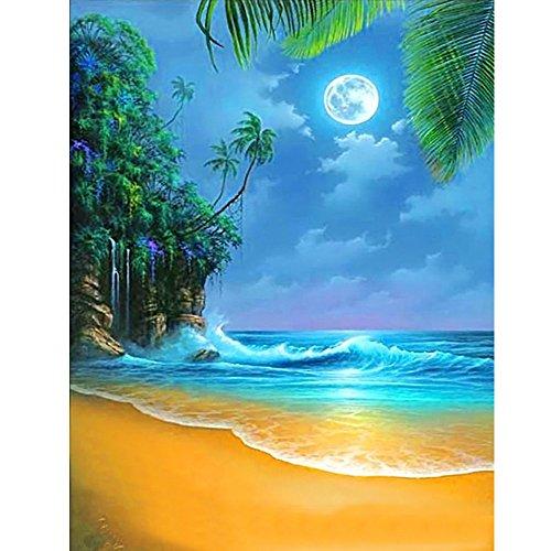 (DIY 5d Diamond Painting Kits Malerei,Handgemachtes Klebeband Farbe Diamond Malerei Stickpackungen mit Digital Set eingefärbt Kreuzstich Strand 30 40cm 0112,Pelz Home Dekoration )