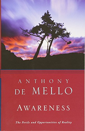 Awareness: The Perils and Opportunities of Reality PDF
