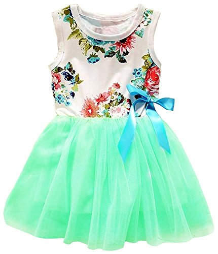2Bunnies Baby Girls Floral Flower Girl Dress Tulle Tutu Birthday Party Sundress (12M, Mint)