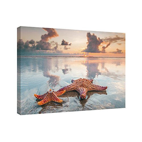 SUMGAR Beach Themed Bathroom Decor Seascape Wall Prints on Canvas Starfishs Artwork -
