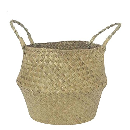 Aneil Woven Belly Storage Basket, Seagrass Planter with Handle, Plant Flower Pots, Home Kitchen Organizer (M, Natural)
