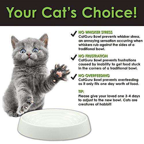 CatGuru NEW Premium Whisker Stress Free Cat Bowls, SET OF 2, Reliefs Whisker Fatigue, Wide Cat Dish, Non Slip Cat Feeding Bowls, Shallow Cat Bowls, Non Skid Pet Bowls For Cats, Oval, Marshmallow by CatGuru (Image #6)