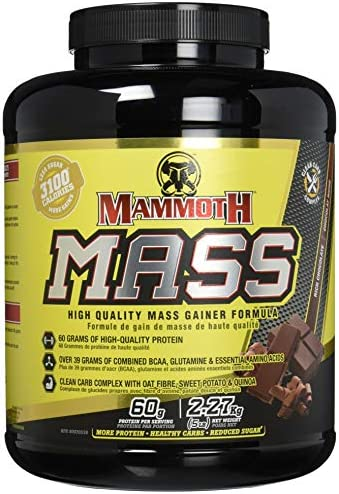 Interactive Nutrition Mammoth Mass Chocolate 2270 g