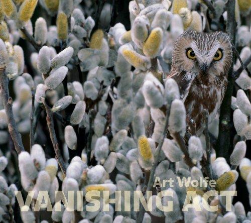 Vanishing Act - Sleeper Camouflage