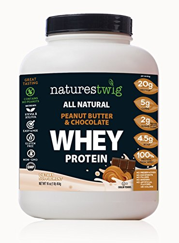 NaturesTwig All Natural Whey Protein (Kosher- Cholov Yisroel) (Peanut Butter & Chocolate) Review