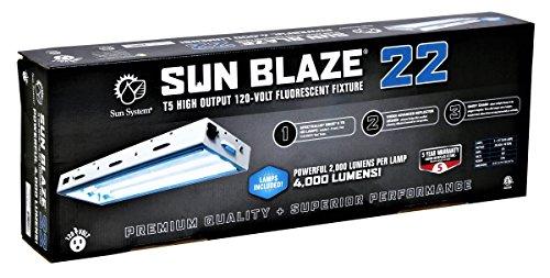 Sun Light 960290 120-volt T5 High Output Fluorescent Lighting Fixture, 2-Feet, 2 Lamps