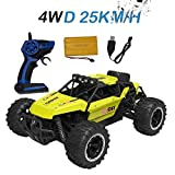 Hisoul RC Off-Road Vehicle 1:16 2.4G 25km h 4WD Independent Suspension Off-Road Rally Car Radio Remote Control Car with USB Charge Line for Children Christmas Best RC Car Gift (Yellow)
