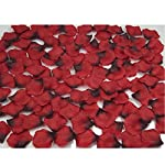 Mydio-2000-Pack-Dark-Red-Silk-Rose-Petals-Wedding-And-Birthday-Flower-Decorative-Rose-Petals-Creative-Props2000-pcs