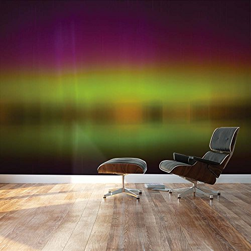 Blurred out Purple and Green Northern Lights Reflection Landscape Wall Mural