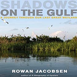Shadows on the Gulf