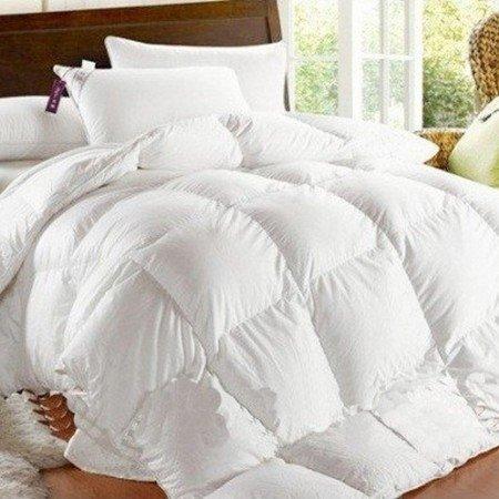 Chaqueta de plumón plumas de oca 90 Plumón 10 320 gr Antártida - Interior Saco de dormir de plumón, Bianco, 160 x 190 cm: Amazon.es: Hogar