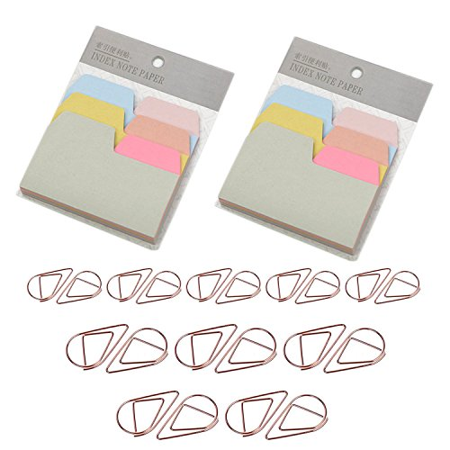 Index Tab Clips - D-worthy 2 Pack Divider Sticky Notes Index Tabs Paper with 20 Pcs Metal Paper Clip Rose Gold Color