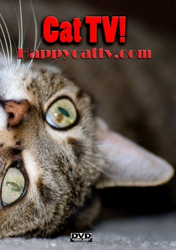 Happy Cat TV by