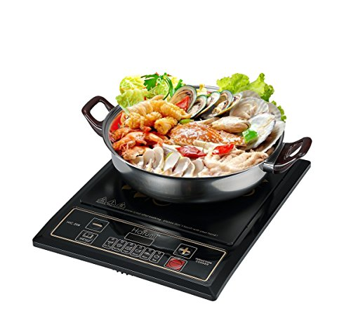 induction cooker 2000w - 7