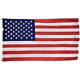 Annin Flagmakers 48 3 ft. x 5 ft. Signature Series U. S. Flag