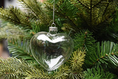 Heart Shaped Ornaments (6 X Hanging Clear Heart Shape Glass Baubles Ornaments, Perfect for Garden Outdoor Christmas Wedding Decoration or DIY Personalize)