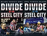 Front cover for the book Divide of the Steel City: Blade Versus Owl by Steve Cowens