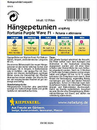 Kiepenkerl  Hängepetunien 3796 *Fortunia Purple Wave F1* üppiger Wuchs purpurrot