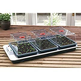 Garland Budget Small Plant Seed /& Cuttings Greenhouse /& Home Propagator