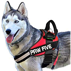 51Xpwe7yUCL. SS250  - Paw Five CORE-1 Reflective No-Pull Dog Harness