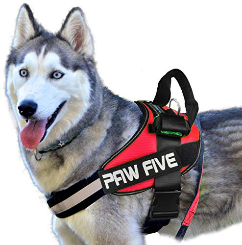 Paw Five CORE-1 Reflective Dog Harness