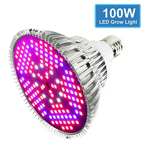 All In One Led Grow Light in Florida - 5